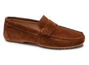 PIERRE CARDIN 80618<br>marron